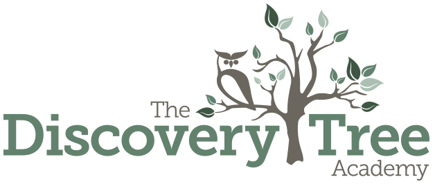 The Discovery Tree Academy