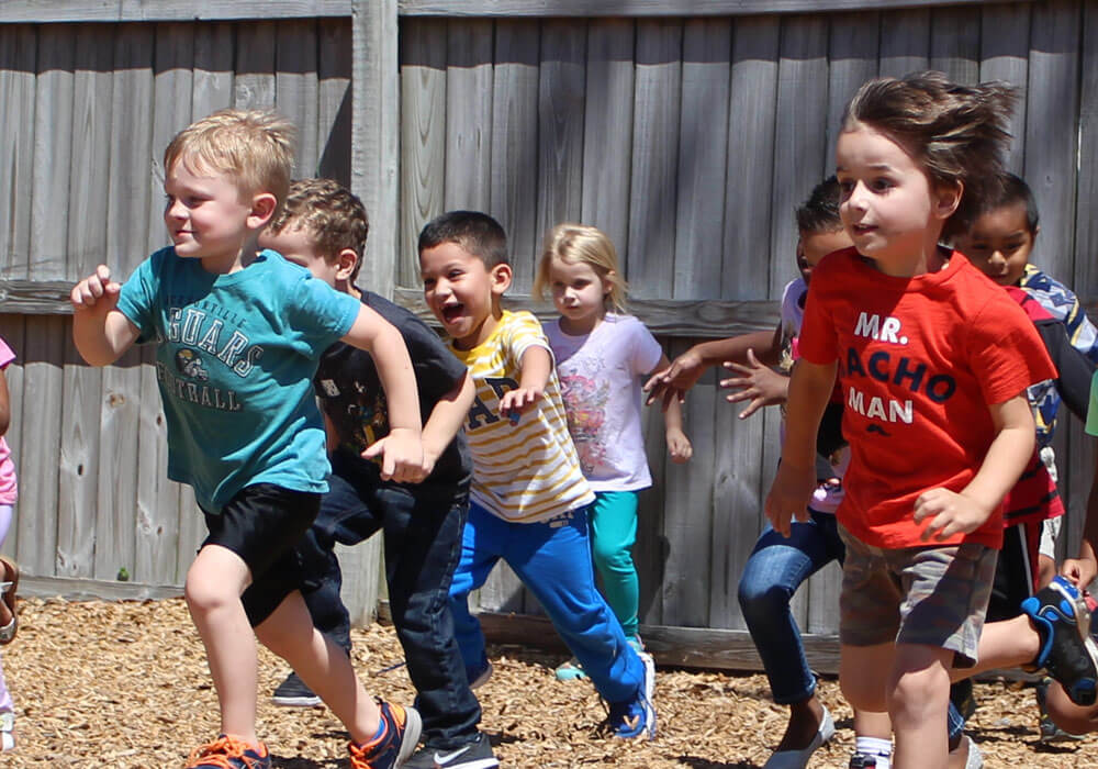 The Discovery Tree Academy   Physical Education